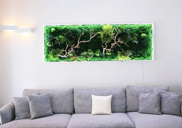 QUADRO FORESTA OMBRA LUCE Image