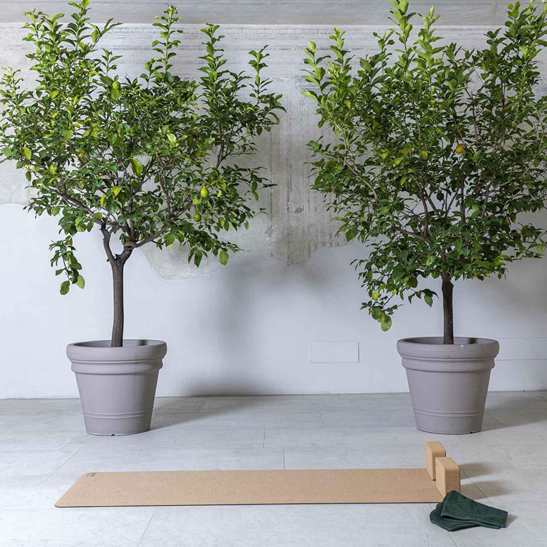 tappetino yoga sostenibile green